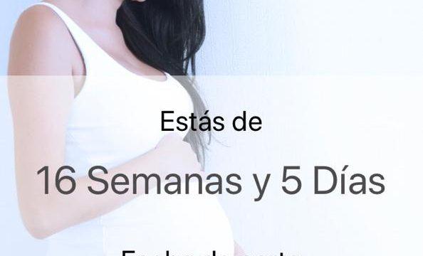 Calculadora embarazo